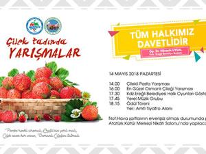 Çilekli pasta ve en güzel Osmanlı Çileği yarışmaları düzenlenecek