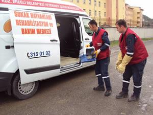 Veteriner İşleri Müdürlüğü'nün dört yıllık dönemdeki çalışmaları