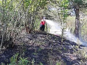 Kozlu'da mezarlıkta çıkan yangın, büyümeden söndürüldü